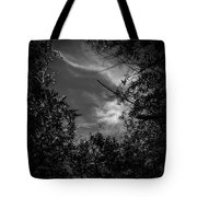 Shimmering Tree Branches Tote Bag