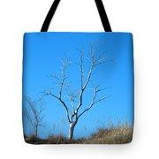 Shimmering Tree Tote Bag