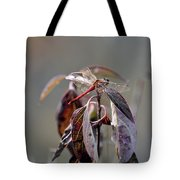 Shimmering Wings- Dragonfly Tote Bag