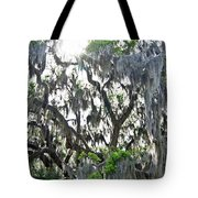 Shine Through Tote Bag