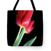 Shine Tote Bag by Tracy Hall