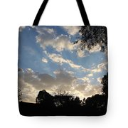 Shinning In The Dark Tote Bag