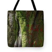 Shire Tote Bag