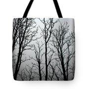 Shiver Me Timbers Tote Bag