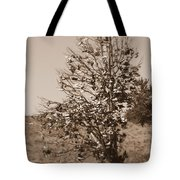 Shoe Tree In Sepia Tote Bag