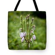 Shooting Star Flower - Wisconsin Tote Bag