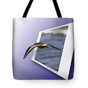 Shore Bird In Flight Tote Bag