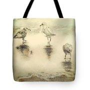 Shore Birds At Sunset Tote Bag