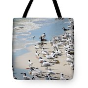 Shorebird Gathering Tote Bag