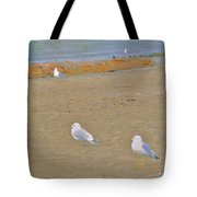 Shorebirds Tote Bag