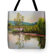 Shoreline At Evening Tote Bag