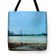 Shoreline View Tote Bag