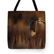 Short-eared Owl Banking Tote Bag