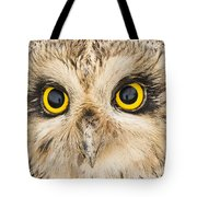 Short-eared Owl Face Tote Bag