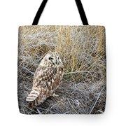 Short Eared Owl Tote Bag by Michael Chatt