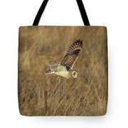 Short-eared Owl With Vole Tote Bag