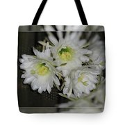 Short-lived  Tote Bag