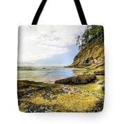 Short Sands Beach, Oregon Tote Bag