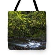 Short Sands Creek Tote Bag