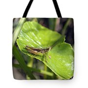 Short Winged Green Grasshopper Tote Bag