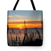 Short Winter Day Tote Bag