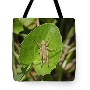 Shortwinged Green Grasshopper Tote Bag