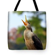 Shout Shout Let It All Out Tote Bag