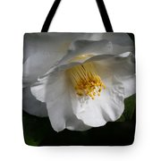 Showered With Love Tote Bag
