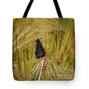Showing The Dark Side. European Peacock On Barley Tote Bag