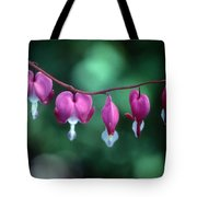 Showy Bleeding Hearts  Tote Bag