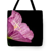 Showy Evening Primrose Tote Bag