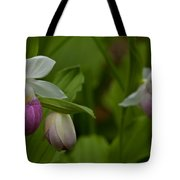 Showy Impressions Tote Bag