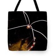 Shrimp Face Tote Bag