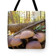 Shroomers  Tote Bag
