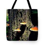 Shroomtree Tote Bag