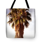Shrouded In The Past 1 Tote Bag