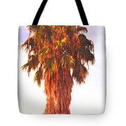 Shrouded In The Past 2 Tote Bag