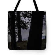 Shrouded  Soul Tote Bag