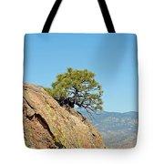 Shrub And Rock At Canon City Tote Bag