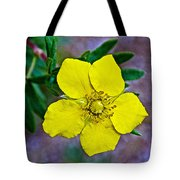 Shrubby Cinquefoil On Iron Creek Trail In Sawtooth National Wilderness Area-idaho  Tote Bag