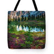 Shuksan Autumn Tote Bag