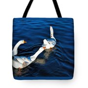 Shy But Lovely Tote Bag