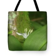 Shy Flower  Tote Bag