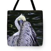 Shy Pelican Tote Bag