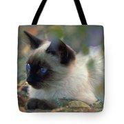 Siamese Cat Hiding Tote Bag