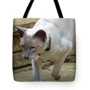Siamese Exploring Tote Bag