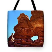 Siamese Twins Natural Window Tote Bag