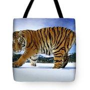 Siberian Tiger Tote Bag