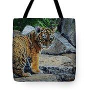 Siberian Tiger Cub Tote Bag