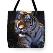 Siberian Tiger Executive Portrait Tote Bag